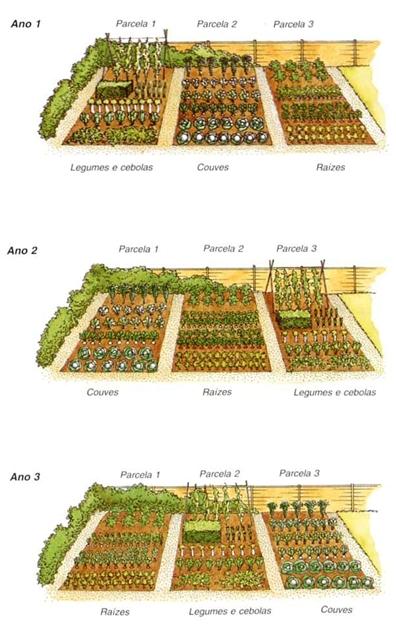 rotacao-culturas