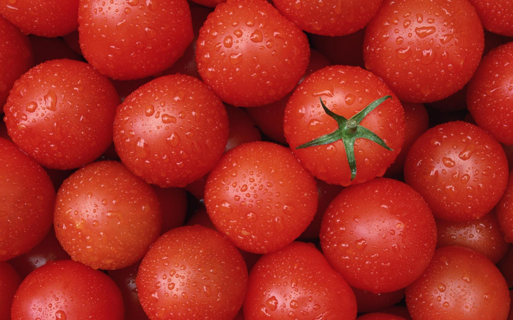 tomato-wallpaper-1